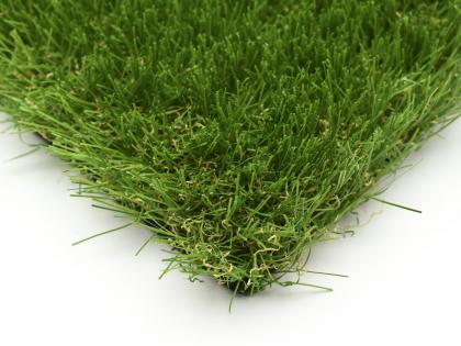 Tomorrow Lawn