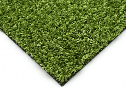 Fitness Grass