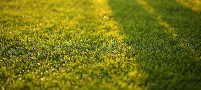 Does artificial turf lose its colour?